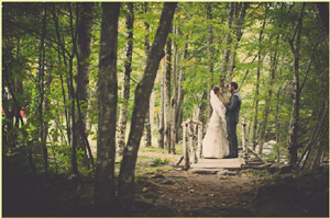 autumn wedding couple on a handmade birch bridge