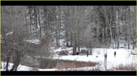 Winter Wedding at Full Moon Resort- Video snip by the Pond